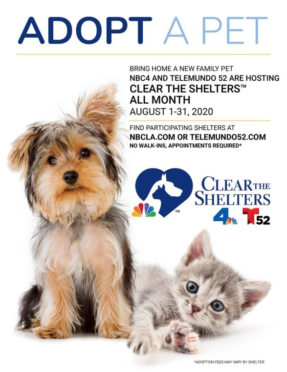 Clear the Shelters 2020 Adoption Event @ Inland Valley Humane Society & S.P.C.A.